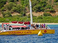 Wadadli Cats just beyond the finish
