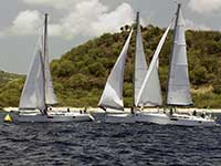 Antigua Sailing Week - Race Number 205