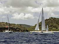 Antigua Sailing Week - Race Number 221