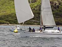 Antigua Sailing Week - Sail Number 20