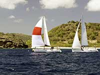 Antigua Sailing Week - Sail Number 9824