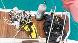 Dive ladder and search gear